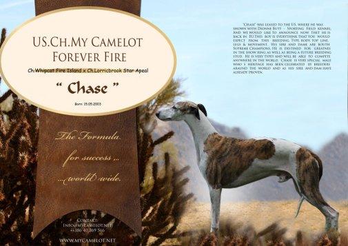 9-chase.jpg