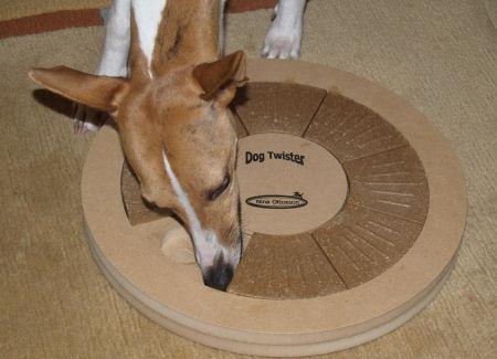 DogTwister11.jpg