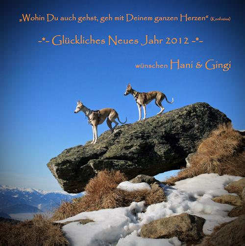 _neujahrswunsche2012_.jpg