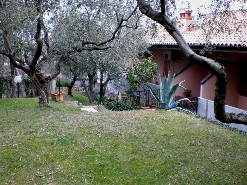 adamgarten1.jpg