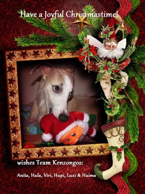 kenzongos-christmas-2011.jpg