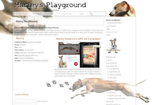 marleysplayground.jpg