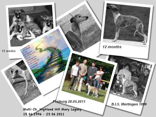 multi-ch-highland-hill-mary-legacy-15041996_23062011.jpg