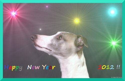 neujahrskarteflet2012-k-1.jpg
