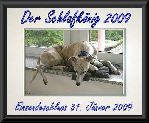 schlafkonig-2009.jpg