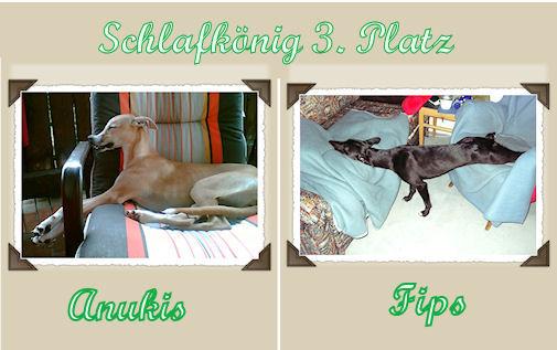schlafkonig3platzanukisfipsab.jpg