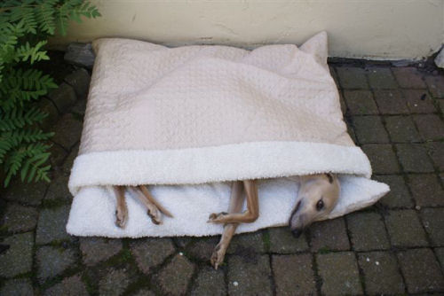 sleeping-bag-004.jpg