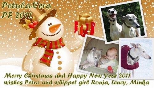 weihnachten-petula-vera-whippets.jpg