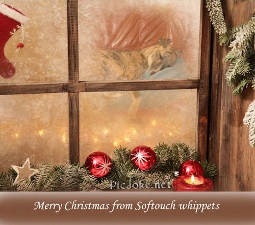 weihnachten-pirjo.jpg