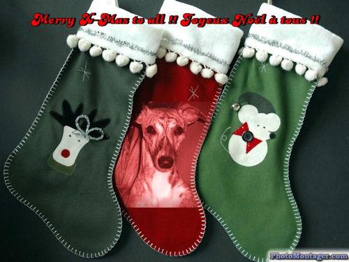 weihnachten-taraly.jpg