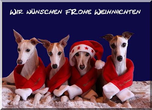 weihnachtskarte-bayernbande-2008.jpg